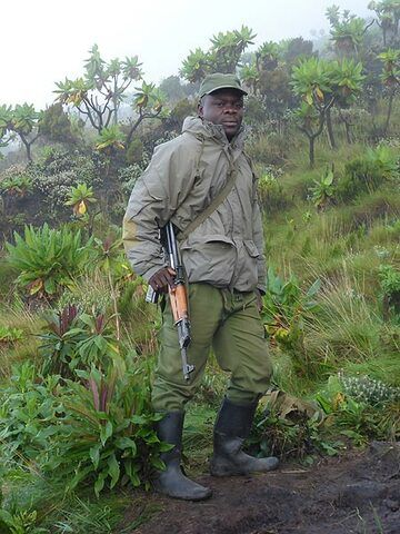 Day 6 - One of the Virunga National Park rangers who escorts the group on the daily descent from the volcano´s summit (Photo: Ingrid Smet)