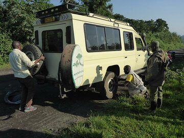 Day 7 - changing a flat tire on the rough road from Goma to the starting point of the gorilla tracking (Photo: Ingrid Smet)