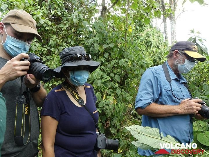 Day 7 - Before going near the mountain gorillas, everyone is obliged to wear a mouth mask to reduce the risk of passing on any human diseases to these primates (Photo: Ingrid Smet)