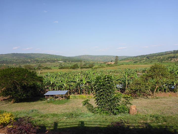 Day 8 - Rwandan scenery along the road back to Kigali (Photo: Ingrid Smet)