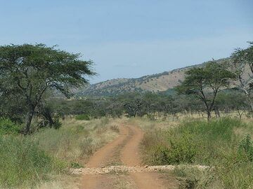 Akagera NP extension - typical park road, 4WD recommended (Photo: Ingrid Smet)