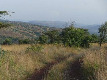 Akagera NP extension -  late afternoon game drive in the park (Photo: Ingrid Smet)