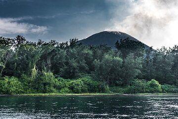 Anak Krakatau with its forest (Photo: Ivana Dorn)