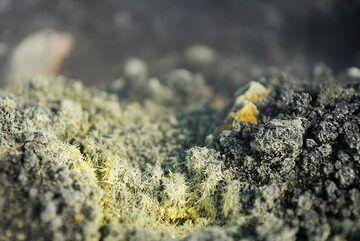 Delicate sulphur crystals on Anak Krakatau. jpg (Photo: Ivana Dorn)