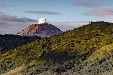 Eruption of Semeru in morning light (Photo: Ivana Dorn)