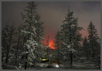 Winter forest with the glow from the Tolbachik fissure eruption in 2012-13 (Photo: Alexander Lobashevsky)