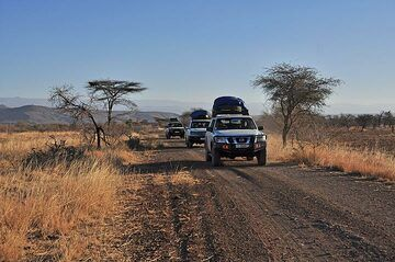 Driving down from the green highlands around Addis down into the Danakil desert we pass through the African steppe vegetation and have a short safari in Awash National Park (Photo: Anastasia)