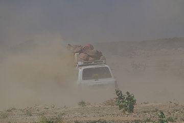 Desert road (Photo: Dietmar)