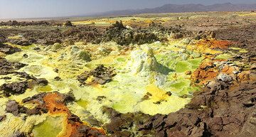 What was dry desert land from which videos where made of Dallol´s active areas about 2 weeks ago has now transformed into a new zone of highly active hydrothermal activity, with miniature geysirs, salt springs and colourful deposits. (Photo: Hans and Jooske)