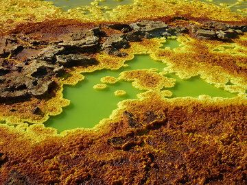 Between the yellow-orange-brown salt deposits at Dallol there are again numerous ponds and lake of acid geothermal water. (Photo: Hans and Jooske)