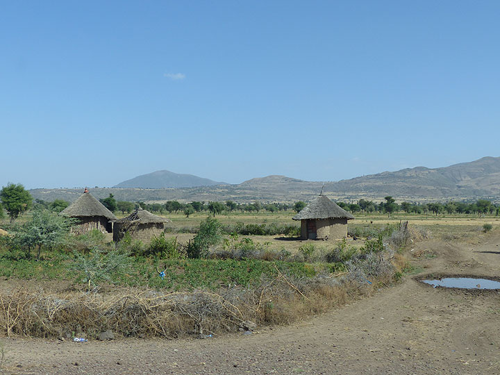 DAY 1: On the road from Addis Ababa towards Awash National Park (Photo: Ingrid)