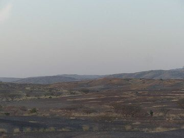 DAY 2: From Awash NP to Logia - dry steppe to half-desert landscape around dusk (Photo: Ingrid)