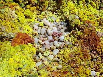 Fumarole deposits on Milos Paleochori beach (Photo: Isabelle Ammon Saugy)