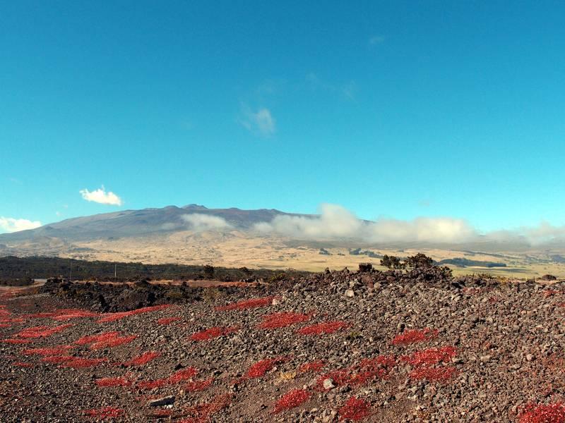 Volcán Mauna Kea, en parte en las nubes, Big Island, Hawaii (Photo: Janka)