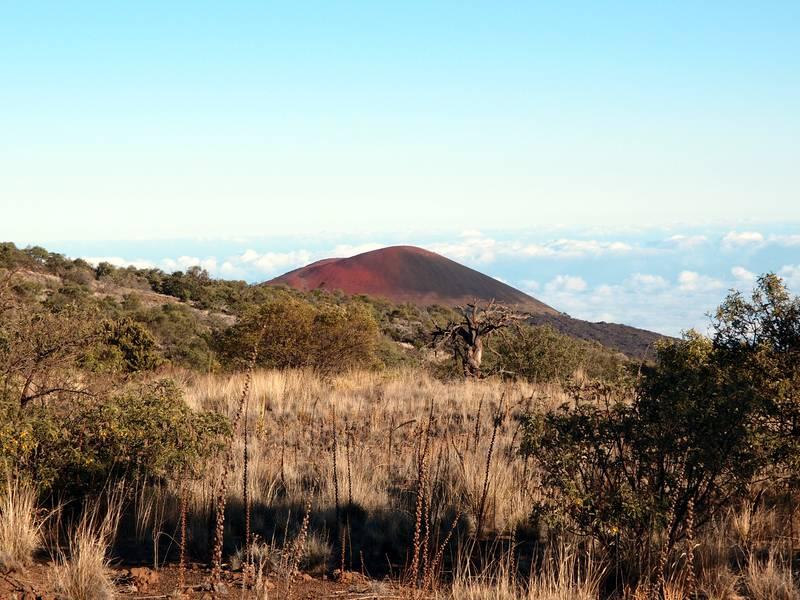 Cinder cone in the mountain region of Mauna Kea volcano, Big Island, Hawaii (Photo: Janka)