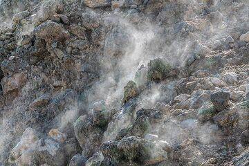 Fumaroles at Pisciarelli (Photo: Markus Heuer)