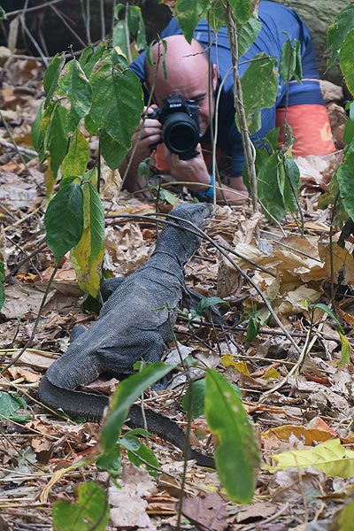 Roberto photographing a monitor lizard (Photo: Ronny Quireyns)