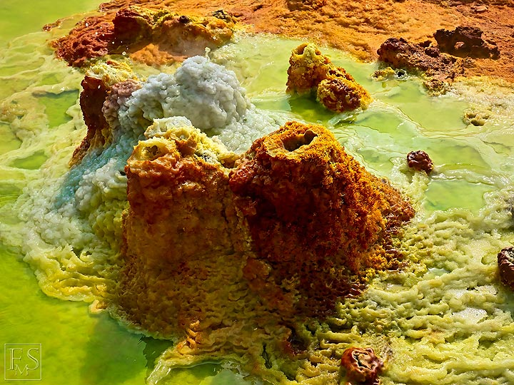 Mineralisations that form from the hydrothermal waters build up small salt cones around the hot springs (c)