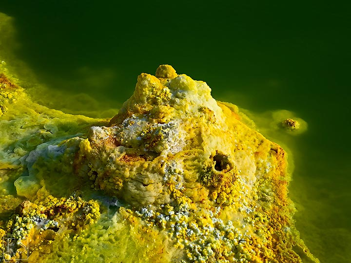 Yellow-white salt deposits at the edge of a green acid pond in Dallol (c)
