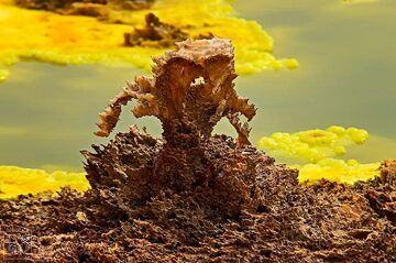 Bizarre salt formation at Dallol hydrothermal area with yellow-green acid pond in the background (c)