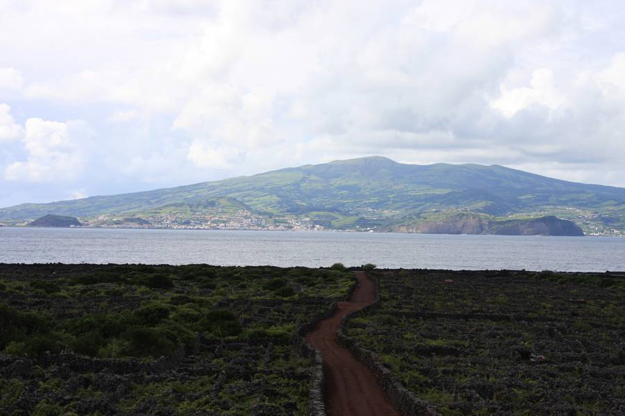 vineyards of Pico Island with view at Faial Isl., Azores (Photo: WNomad)