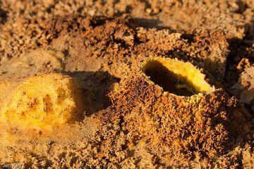 Salt formations at Dallol (Photo: jimkeir)