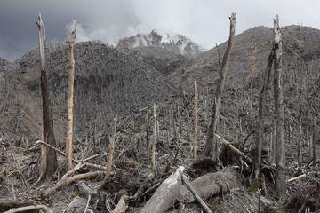 Flujos piroclásticos han destruido bosques del lado norte del domo de lava del volcán Chaitén. (Photo: Richard Roscoe)