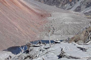 Pie del domo de lava y la vegetación dañada en el borde alrededor de la caldera del volcán Chaitén. (Photo: Richard Roscoe)