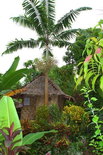 Junglw bungalow (Photo: Yashmin Chebli)