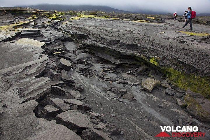 Bizarre Erosionsstrukturen in der Aschenebene der Ambrym Kaldera. (Photo: Tom Pfeiffer)