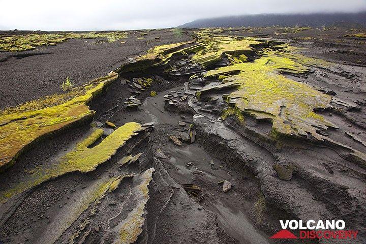 Die vulkanischen Ascheschichten, die den flachen Kalderaboden bedecken und von Erosion zerfurcht sind. (Photo: Tom Pfeiffer)
