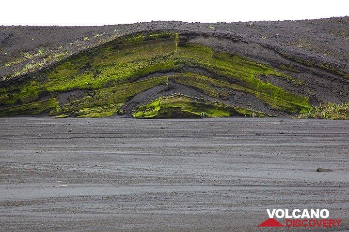 Der Weg zum Marum führt durch ein breites Flusstal, das ältere Aschenablagerungen durchschneidet. (Photo: Tom Pfeiffer)
