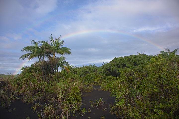 "Rainbow above the ""oasis"" near the campsite. (Photo: Tom Pfeiffer)"