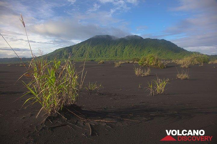 Blick nach Süden über die Aschenebene zum Rand der Kaldera. (Photo: Tom Pfeiffer)