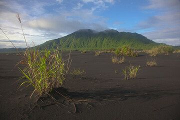 View over the ash plain towards the southern rim of the caldera. (Photo: Tom Pfeiffer)
