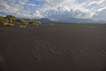"""View north oer the ash plain towards Benbow (l) and Marum(r) craters. The """"oasis"""" (left) in the ash plain is protected by dunes of black sand. (Photo: Tom Pfeiffer)"""