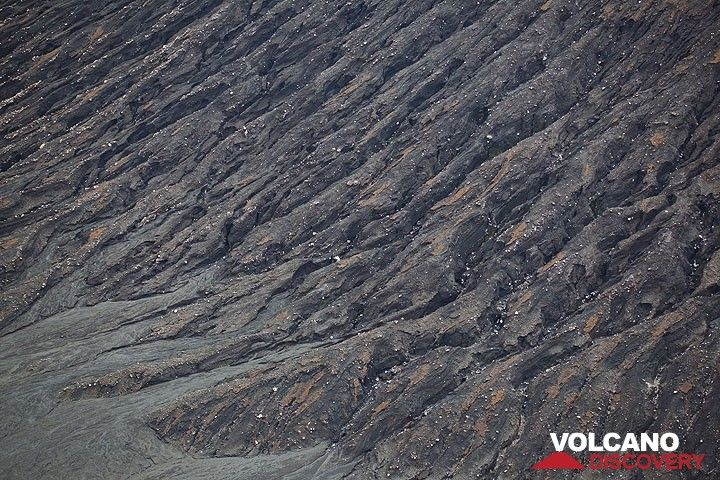 Erosion gullies of Benbow crater (Photo: Tom Pfeiffer)