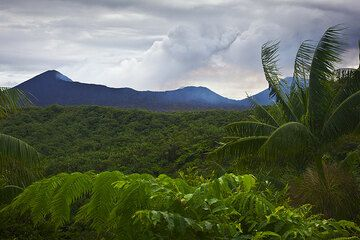 Benbow crater and the rim of the caldera seen from outside, where the flanks of Ambrym volcano are covered by thick rainforest. (Photo: Tom Pfeiffer)