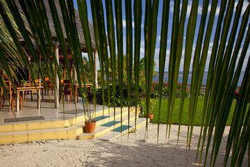Tropical impression (Photo: Tom Pfeiffer)