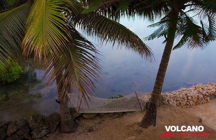 Tropische Hängematte (Photo: Tom Pfeiffer)