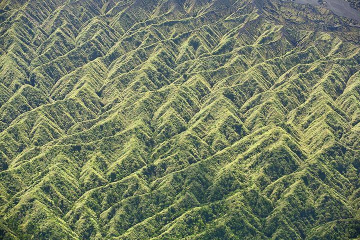 Muster-bildende Erosionsrillen an der westlichen Flanke der Ambrym Kaldera (Photo: Tom Pfeiffer)