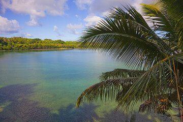 Port Resolution Bay (Photo: Tom Pfeiffer)
