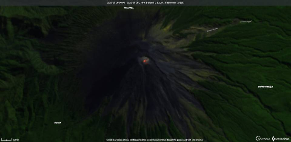 Satellite image of lava flows on the south and southeast flank from Semeru volcano on 29 July (image: Sentinel 2)