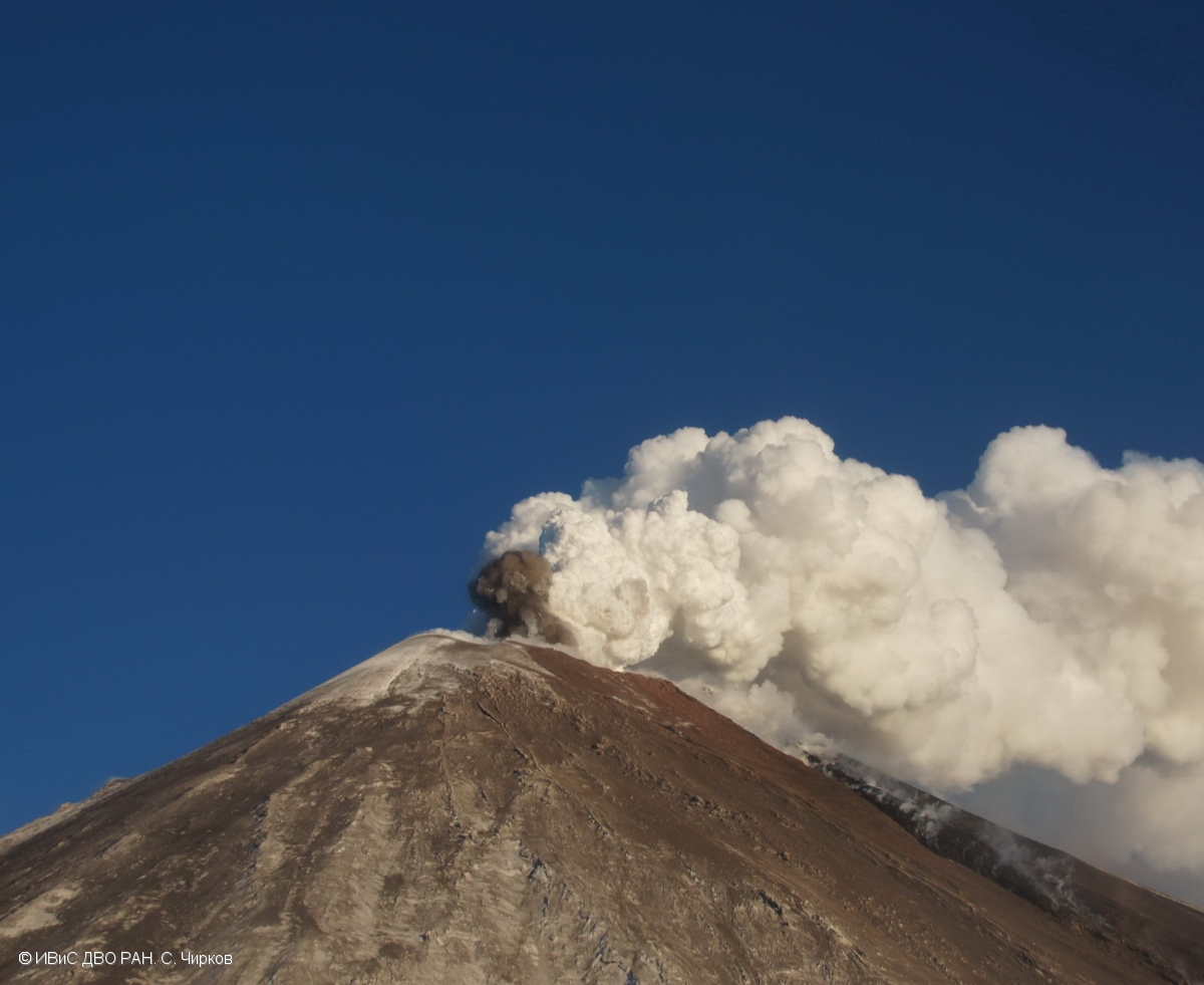 Gas plume accompanied with small amount of ash erupted from Klyuchevskoy volcano (image: KVERT)
