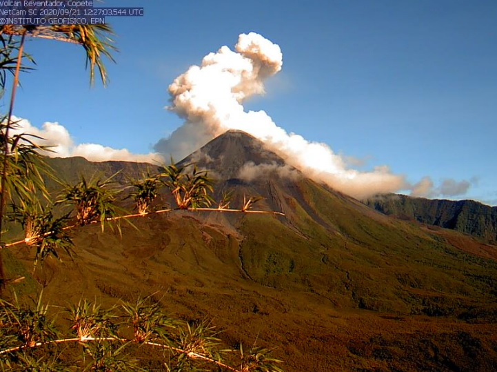 Gas emissions from Reventador volcano yesterday (image: IGEPN)