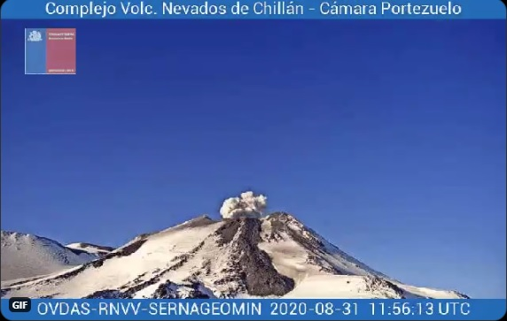 Lava flow and gas content from Nevados de Chillán volcano on 31 August (image: SERNAGEOMIN)