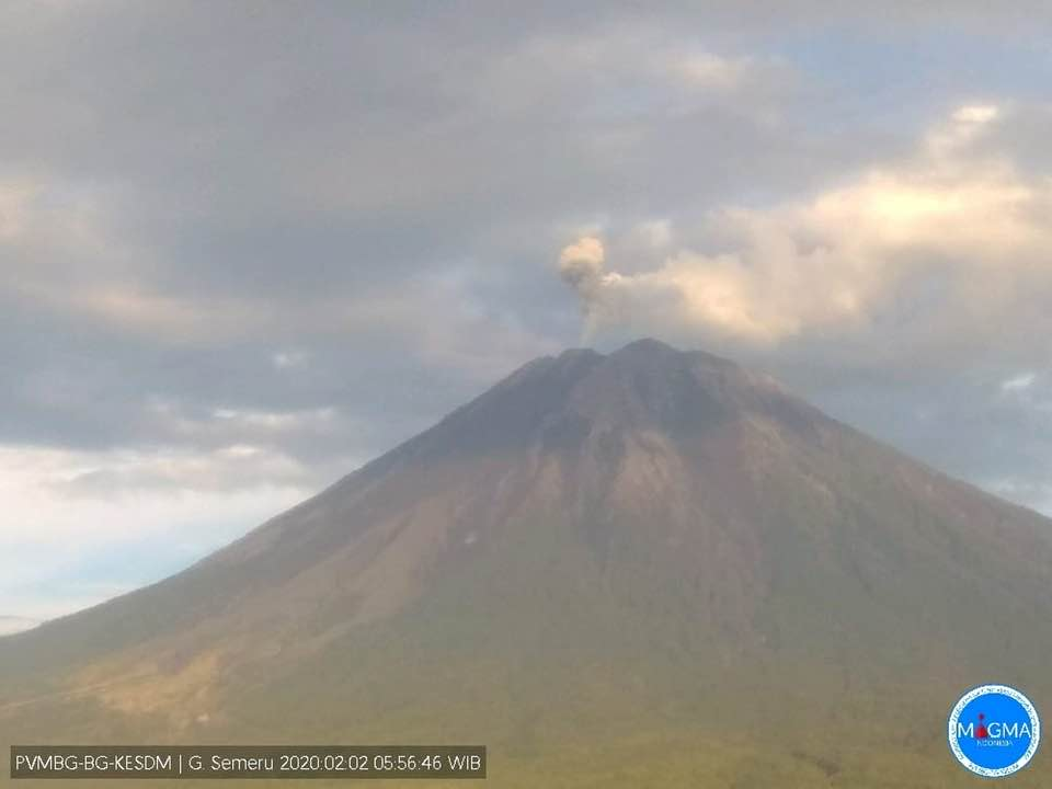 An ash emissions from Semeru volcano on 2 February (image: PVMBG)