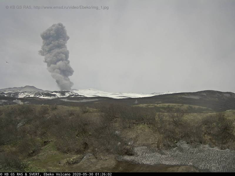 Near-constant moderate explosions from Ebeko volcano (image: KVERT)