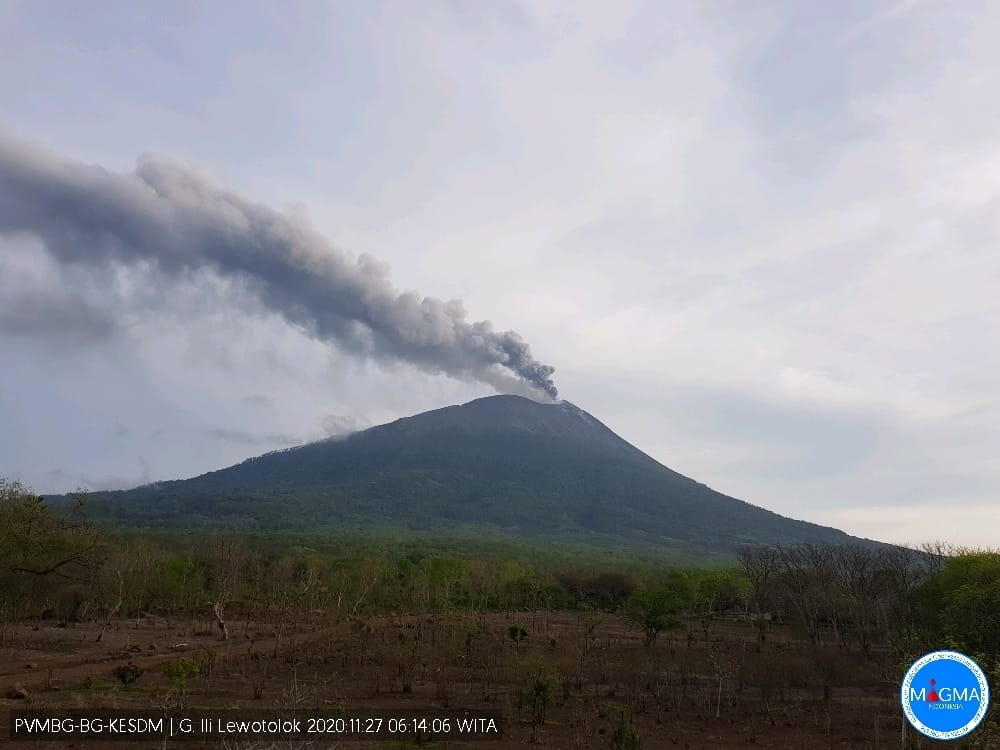Large ash content erupted from Lewotolo volcano today (image: PVMBG)