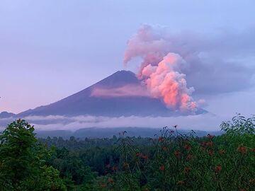 The block-and-ash flows from Semeru volcano (image: @amedpav/twitter)